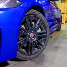 Blue-Jaguar-With-Black-AlloyGator-Exlusives