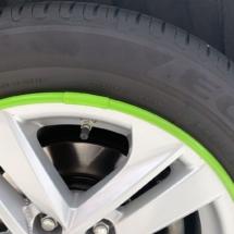 Close up of Green AlloyGators