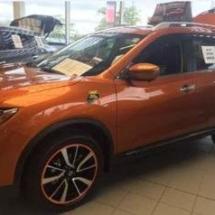 Orange Nissan with Orange AlloyGators