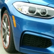 Blue BMW with Red AlloyGators