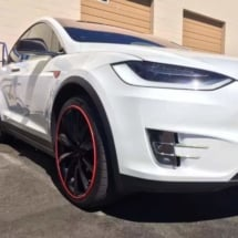 White Tesla with Red AlloyGators