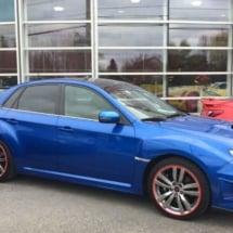 Blue Subaru with Red AlloyGators