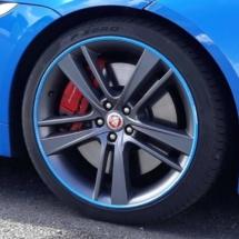 Blue Jaguar with Blue AlloyGators