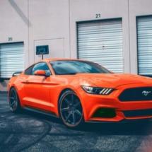 Orange Ford Mustang with Orange AlloyGators