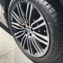 Black BMW with Graphite AlloyGators