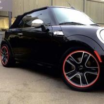 Black Mini with Red AlloyGators