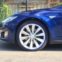 Blue Tesla with Blue AlloyGators