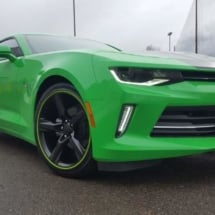 Green Chevrolet with Green AlloyGators