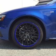 Blue Audi with Blue AlloyGators