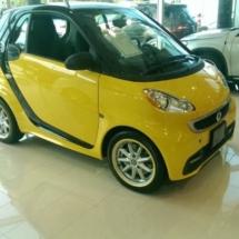 Yellow Smart Car with Yellow AlloyGators