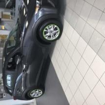 Graphite Cadillac with Green AlloyGators