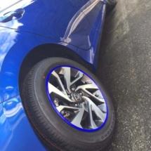 Blue Honda with Blue AlloyGators