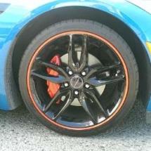Blue Lexus with Orange AlloyGators