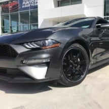 Graphite Ford Mustang with Graphite AlloyGators