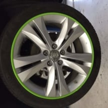 Silver Wheels with Green AlloyGators