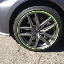 Graphite Lexus with Green AlloyGators