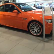 Orange BMW with Orange AlloyGators