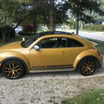 Gold Volkswagen with Black AlloyGators