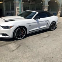 White Ford Mustang with White AlloyGators