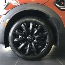 Burnt Orange Mini with Black AlloyGators