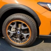 Orange Subaru with Orange AlloyGators