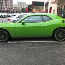 Green Dodge with Green AlloyGators