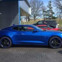 Blue Lexus with Blue AlloyGators