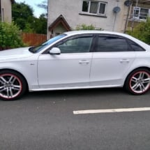 White Audi with Red AlloyGators